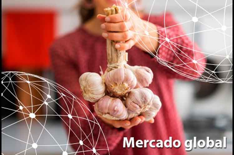 Resumen del mercado global del ajo